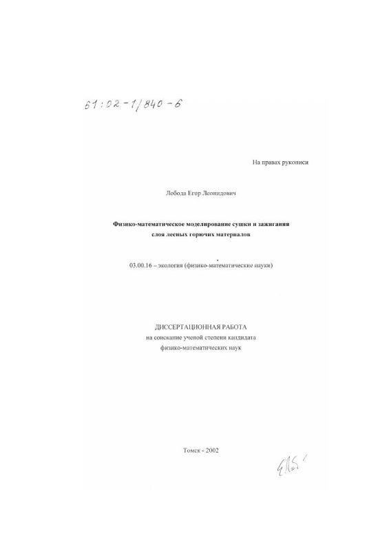 Титульный лист Физико-математическое моделирование сушки и зажигания слоя лесных горючих материалов