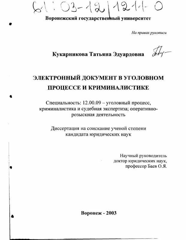 Титульный лист Электронный документ в уголовном процессе и криминалистике