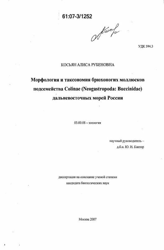 Титульный лист Морфология и таксономия брюхоногих моллюсков подсемейства Colinae (Neogastropoda: Buccinidae) дальневосточных морей России