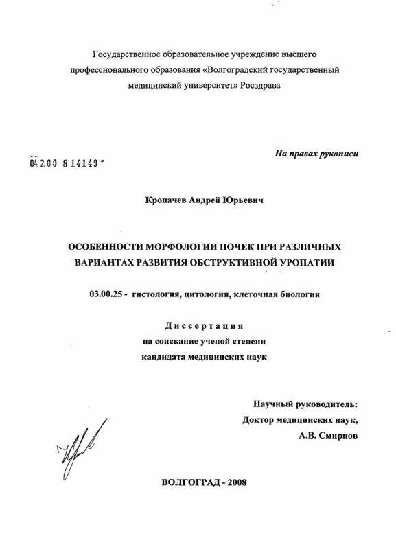 Титульный лист Особенности морфологии почек при различных вариантах развития обструктивной уропатии