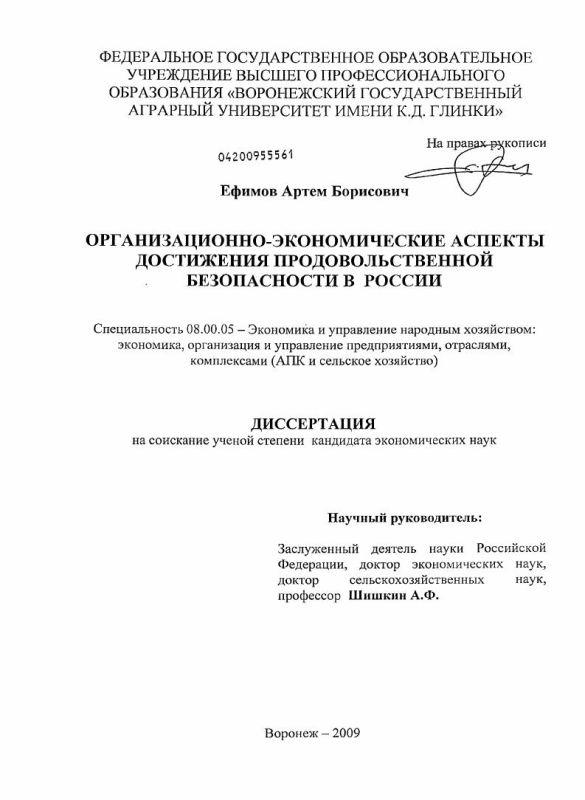 Титульный лист Организационно-экономические аспекты достижения продовольственной безопасности в России