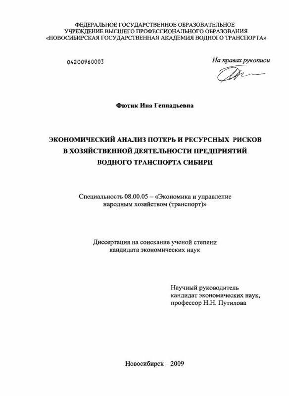 Титульный лист Экономический анализ потерь и ресурсных рисков в хозяйственной деятельности предприятий водного транспорта Сибири