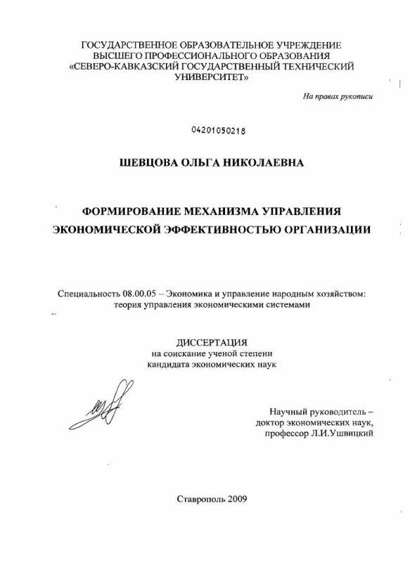Титульный лист Формирование механизма управления экономической эффективностью организации