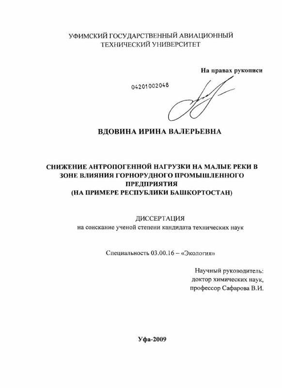 Титульный лист Снижение антропогенной нагрузки на малые реки в зоне влияния горнорудного промышленного предприятия : на примере Республики Башкортостан