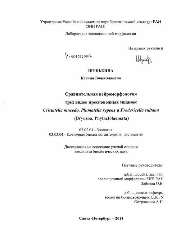 Титульный лист Сравнительная нейроморфология трех видов пресноводных мшанок Cristatella mucedo, Plumatella repens и Fredericella sultana : Bryozoa, Phylactolaemata