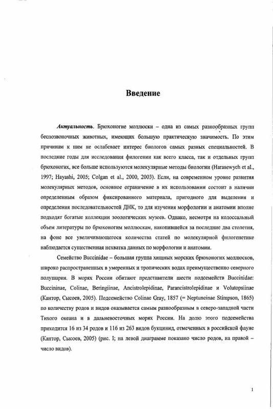 Содержание Морфология и таксономия брюхоногих моллюсков подсемейства Colinae (Neogastropoda: Buccinidae) дальневосточных морей России